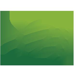 FIBA World Ranking Presented by NIKE, women - FIBA basketball