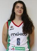 V. Gonzalez Garcia