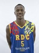 Profile image of Alex RAMAZANI N'SASSE