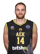 Profile image of Dimitrios KAKLAMANAKIS