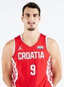 Profile image of Dario SARIC