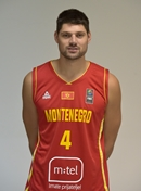 Profile image of Nikola VUCEVIC