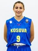 F. Karavidaj