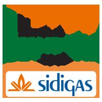 Logo of Sidigas Avellino