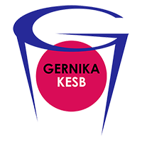 Flag of Lointek Gernika Bizkaia