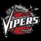 Rio Grande Valley Vipers